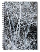 White Tree Black Night Spiral Notebook