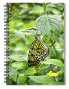 White Tree Nymph Spiral Notebook