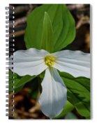 White Trillium 2 Spiral Notebook