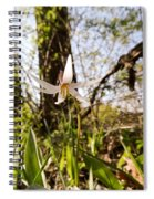 White Trout Lily Spiral Notebook