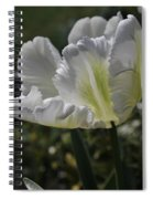 White Tulip 1 Spiral Notebook