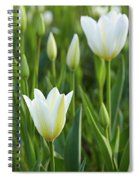 White Tulip Spiral Notebook