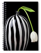White Tulip In Striped Vase Spiral Notebook