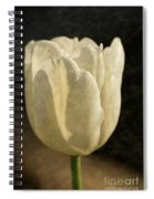 White Tulip With Texture Spiral Notebook