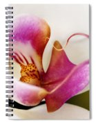 White Veil Orchid Spiral Notebook