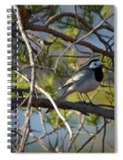 White Wagtail 2 Spiral Notebook