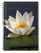 White Waterlily 1 Spiral Notebook
