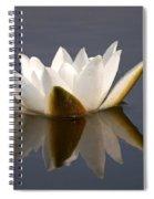 White Waterlily 2 Spiral Notebook