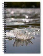 White Waterlily 3 Spiral Notebook