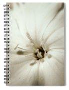 White Waves Spiral Notebook