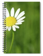 White Wild Flower Spring Scene Spiral Notebook
