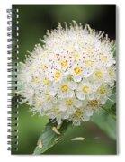 White Wild Flower Spiral Notebook