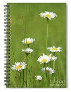 White Wild Flowers Nature Spring Scene Spiral Notebook