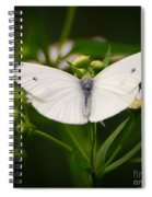White Wings Of Wonder Spiral Notebook