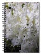 White Wit Spiral Notebook
