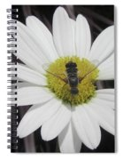 White With Bee Spiral Notebook