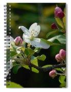 White Woodland Crabapple Flowers Spiral Notebook