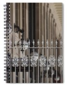 White Wrought Iron Gate In Chicago Spiral Notebook