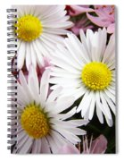 White Yellow Daisy Flowers Art Prints Pink Blossoms Spiral Notebook