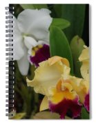 White Yellow Orchids Spiral Notebook