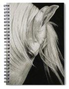 Whitefall Spiral Notebook