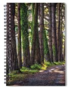 Whiteford Burrows Woods Spiral Notebook