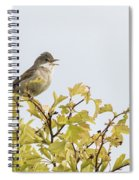 Whitethroat  Spiral Notebook
