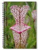 Whitetop Pitcherplant Spiral Notebook