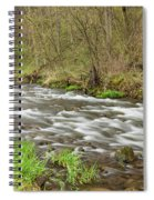 Whitewater River Spring 44 Spiral Notebook