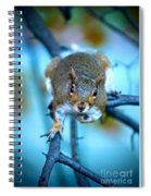 Who Are You Looking At? Spiral Notebook