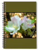 Who Here Has Seen Apple Blossoms In Late Summer Spiral Notebook