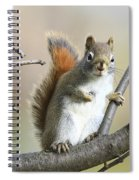 Who Me Spiral Notebook