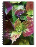 Who Needs Flowers Spiral Notebook