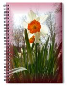 Who Planted Those Flowers Spiral Notebook