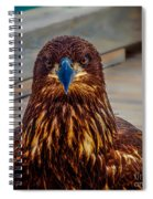 Who You Looking At? Spiral Notebook