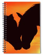 Wholeheartedly Spiral Notebook