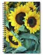 Wholesale Spiral Notebook