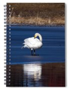 Whooper Swan 2 Spiral Notebook