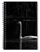 Whooper Swan In Bw 2 Spiral Notebook