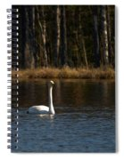 Whooper Swan Of Liesilampi 3 Spiral Notebook