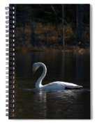 Whooper Swan Of Liesilampi 5 Spiral Notebook