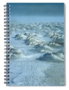 Whooper Swans In Snow Spiral Notebook