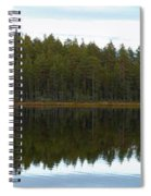 Whooper Swans Panorama  Spiral Notebook