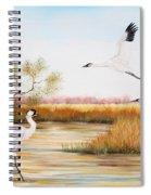 Whooping Cranes-jp3151 Spiral Notebook