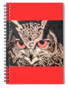 Whoot Owl Spiral Notebook
