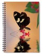 Who's A Pretty Boy Spiral Notebook