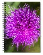 Whoville Spiral Notebook
