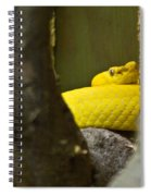 Wicked Snake Spiral Notebook