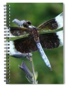 Widow Skimmer Dragonfly Spiral Notebook