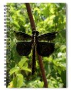 Widow Skimmer Dragonfly Female Spiral Notebook